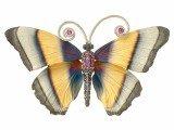 birthstone butterfly jewelry